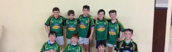 Indoor Hurling and Camogie 2017