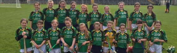 Hurling and Camogie Finalists