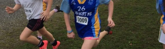 Limerick Schools  Cross Country 2017