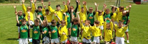 Third & Fourth Class Hurling Blitz