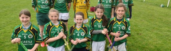 Mini-7's Hurling and Camogie
