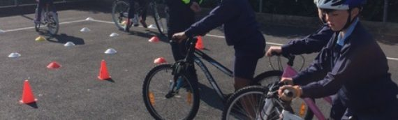 Safe Cycling Programme 2017