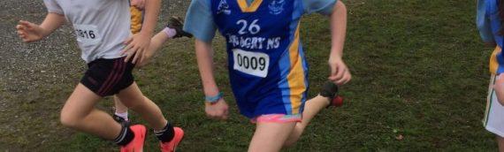 Limerick Schools  Cross Country 2017